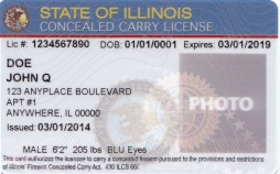 Concealed Carry License