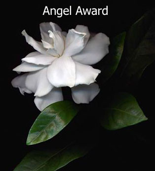 award-angel_edited-1
