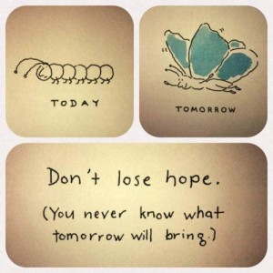 dont-lose-hope4
